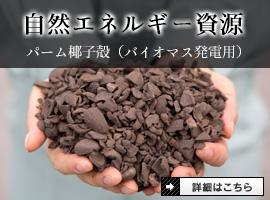 輸入:自然エネルギー資源(バイオマス発電用)